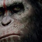 O macaco está certo em Planeta dos Macacos: O Confronto