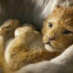 O 1º trailer da nova versão de O Rei Leão é lindo!