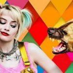 Margot Robbie arrasa muito em Aves de Rapina